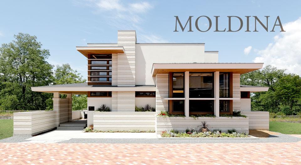 moldina-02
