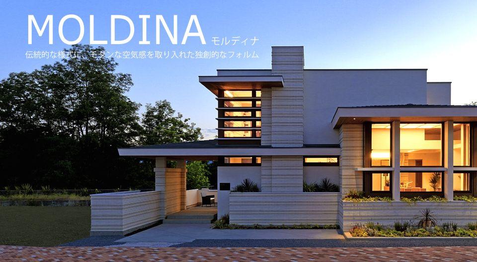 moldina-01